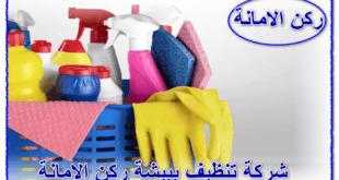 شركة تنظيف ببيشه