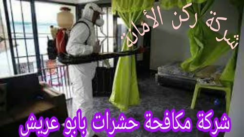 شركة مكافحة حشرات بابو عريش