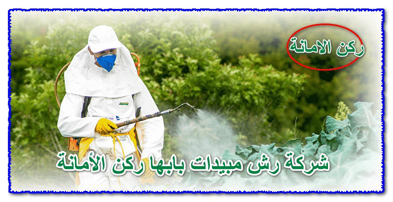 Photo of شركة رش مبيدات بابها 0535304912 مع الضمان والخصم تواصل معنا الأن