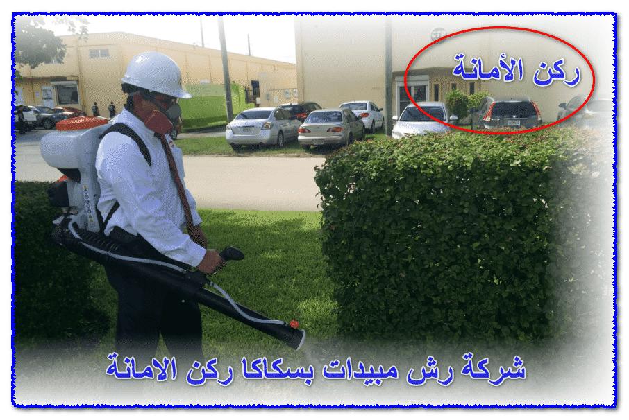 Photo of شركة رش مبيدات بسكاكا 0535304912 [مع الضمان] وخصم 33%