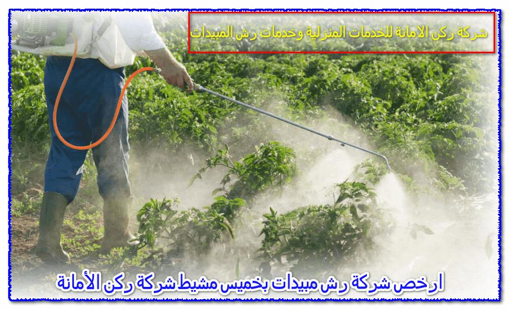 Photo of ارخص شركة رش مبيدات بخميس مشيط 0535304912 مع الخصم يصل 25%
