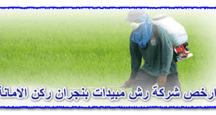 ارخص شركة رش مبيدات بنجران
