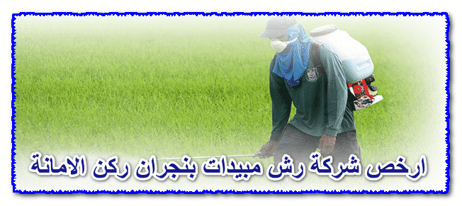 Photo of ارخص شركة رش مبيدات بنجران 0535304912 مع الخصم والضمان